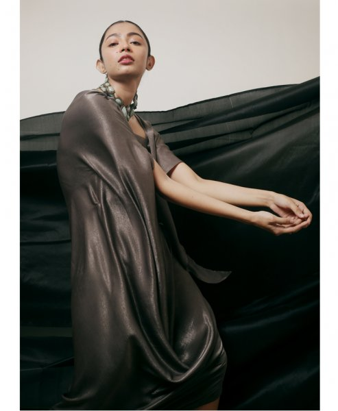 Shiny Draped Gown